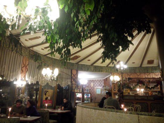 Cafe-Restaurant-Cobenzl-Ficus-Manege-1