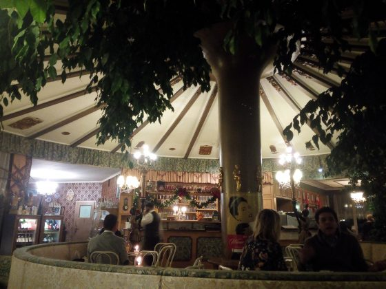 Cafe-Restaurant-Cobenzl-Ficus-Manege-2