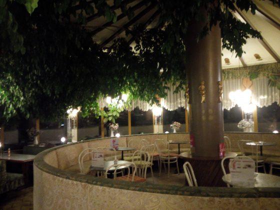 Cafe-Restaurant-Cobenzl-Ficus-Manege-4