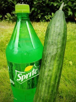 Sprite Cucumber mit Gurke